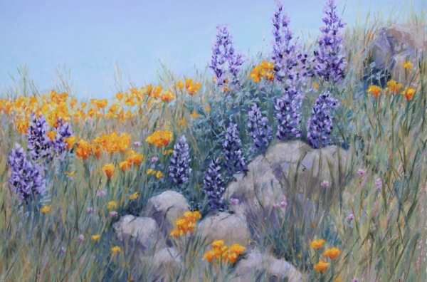 lupine-poppies-and-rocks